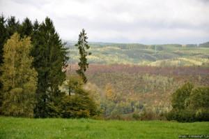 massif forestier